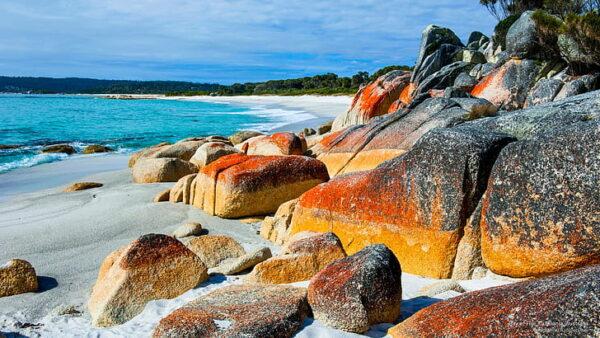 Tazmanya Adası Seyahati Mutlaka Gezilmesi Gereken Yerler